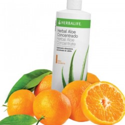 HERBAL ALOE HERBALIFE SABOR MANDARINA